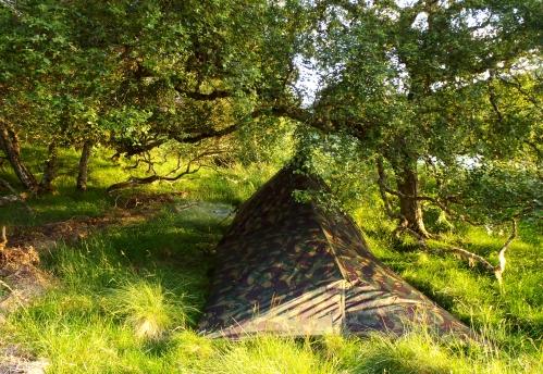 Camping arrangements