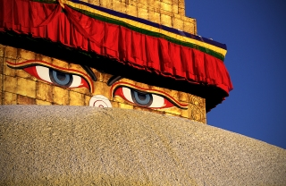 The Buddha's eyes
