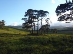 Beginning of the Highlands