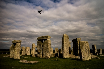 Crow flies over Stonehenge